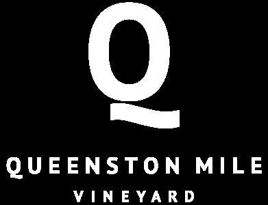 QMV-logo
